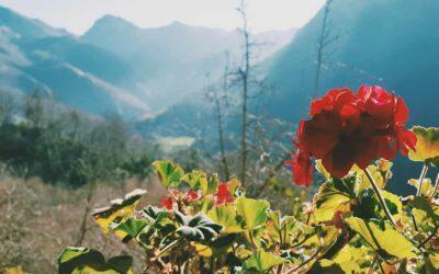 Rincon del SOL, alojamiento rural en Asturias