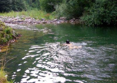 Aguas del Parque de Ponga con mascostas