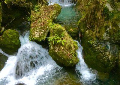casa rural agua del bosque de taranes